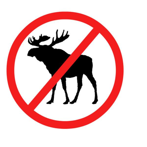 Abercrombie Moose Soon to Be Extinct